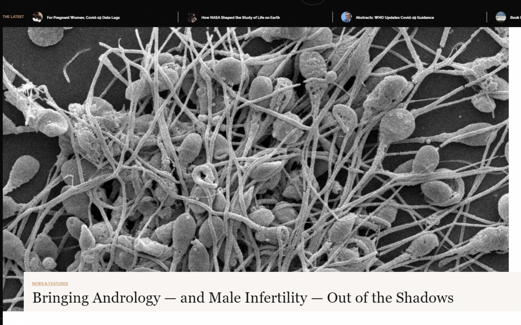 Bringing Male Fertility out of the Shadows