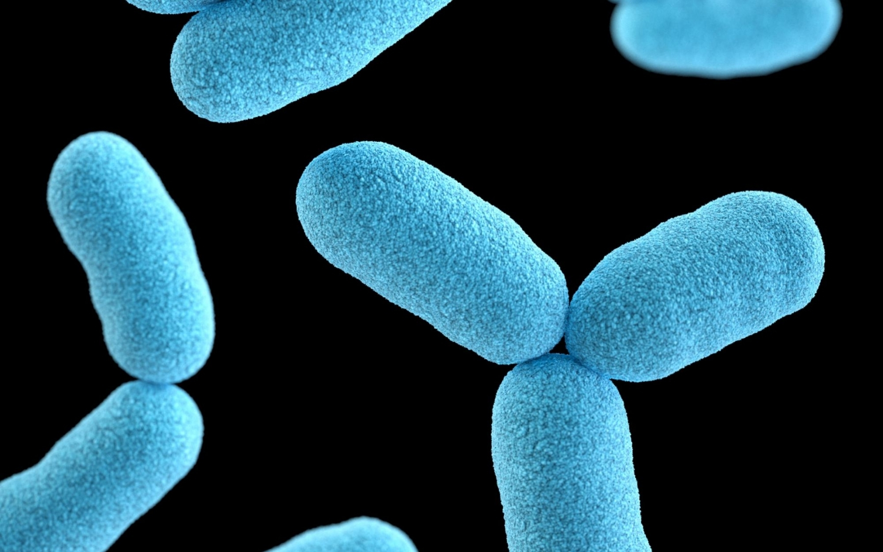 The microbiome in the semen - does it matter?