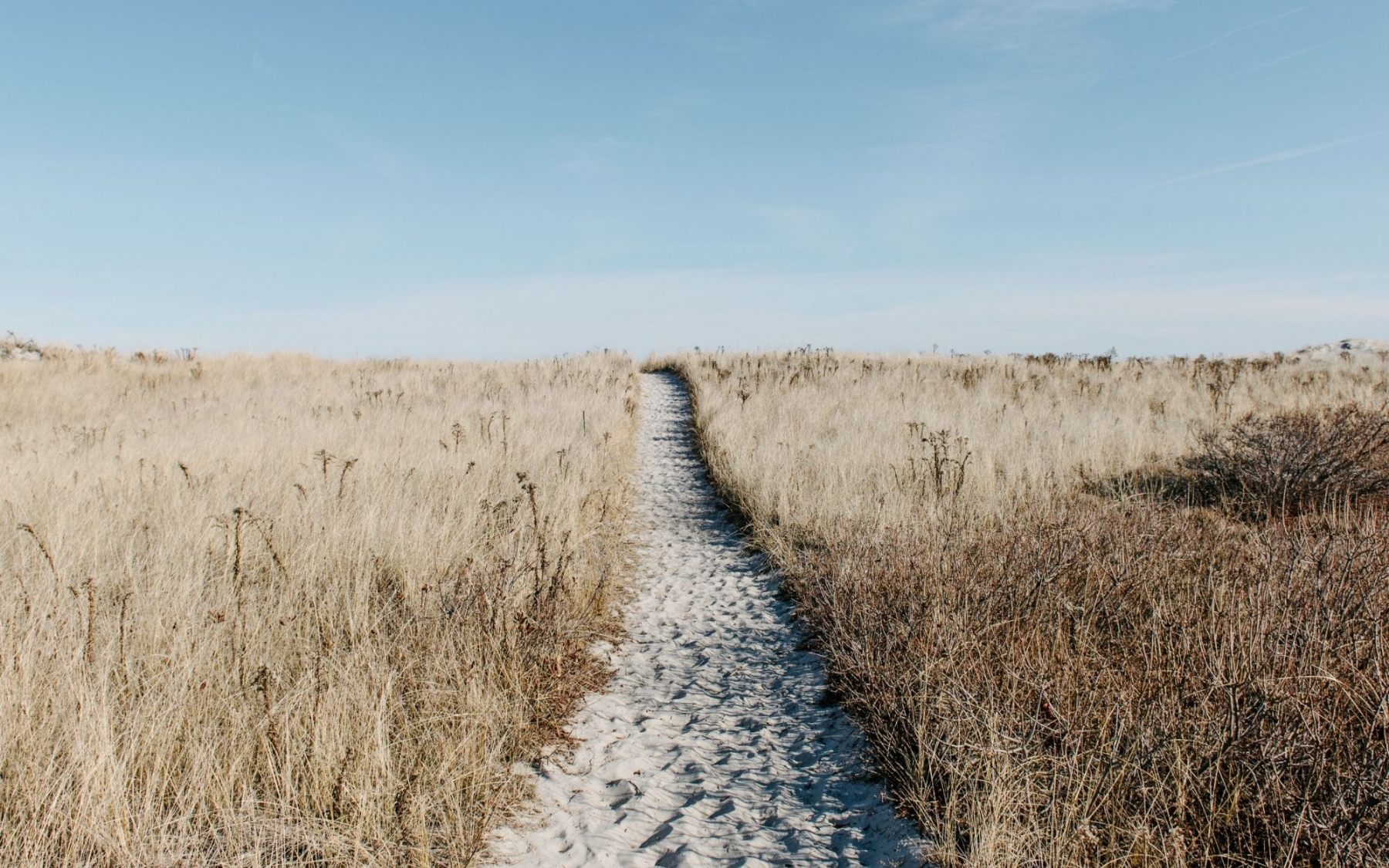 The path ahead with consultations and investigations